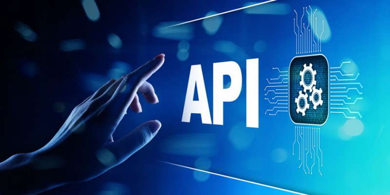 The growing importance of APIs