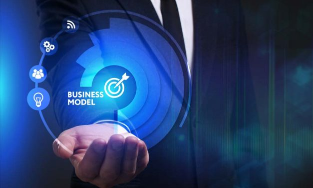 New business models in the consulting industry