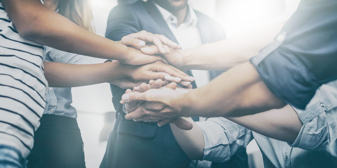 An organisation's culture strongly determines its success